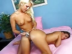 Alluring lesbo vixens like it hard